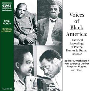 Hörbuch Cover: Voices of Black America (Download)
