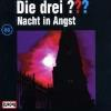 Hörbuch Cover: Nacht in Angst