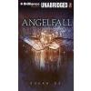 Hörbuch Cover: Angelfall