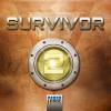 Hörbuch Cover: Survivor 1.02 (DEU) - Chinks! (Download)