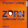 Hörbuch Cover: Zorn 7 - Lodernder Hass (Download)