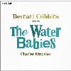 Hörbuch Cover: The Water Babies (abridged)